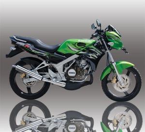 ninja-r-green