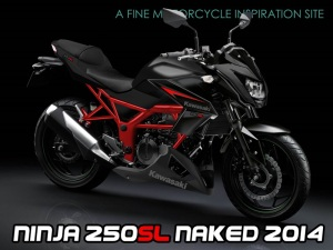 new-kawasaki-ninja-250rr-nakedbike-india