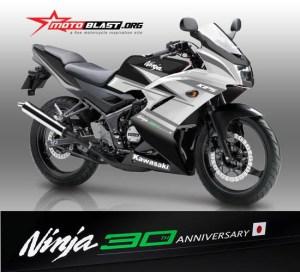 kawasaki-ninja-150-rr-30th-anniversary4