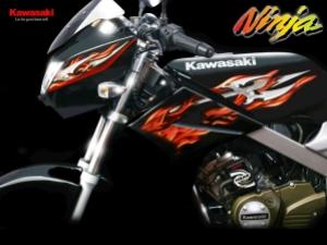 Kawasaki - Ninja 150 R L 09