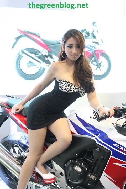 Spg Honda