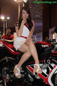 SPG TDR 01